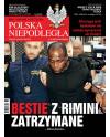 Polska Niepodległa 36/2017