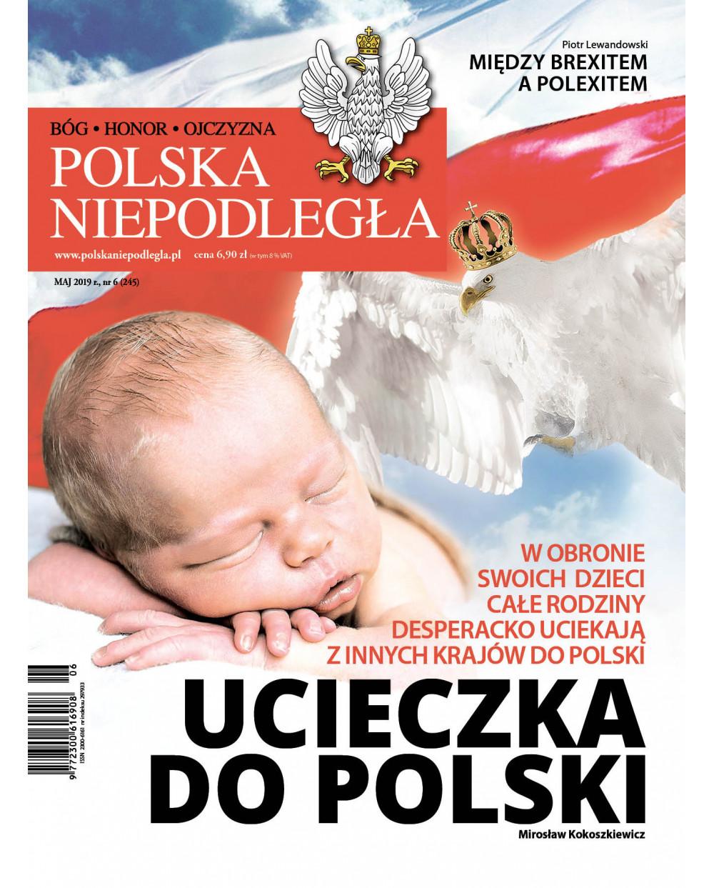 Polska Niepodległa 06/2019